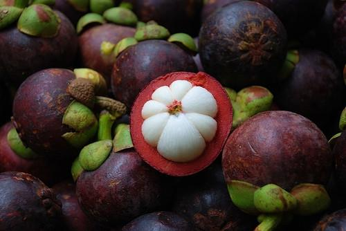 Mangosteen Powder 4 oz 1