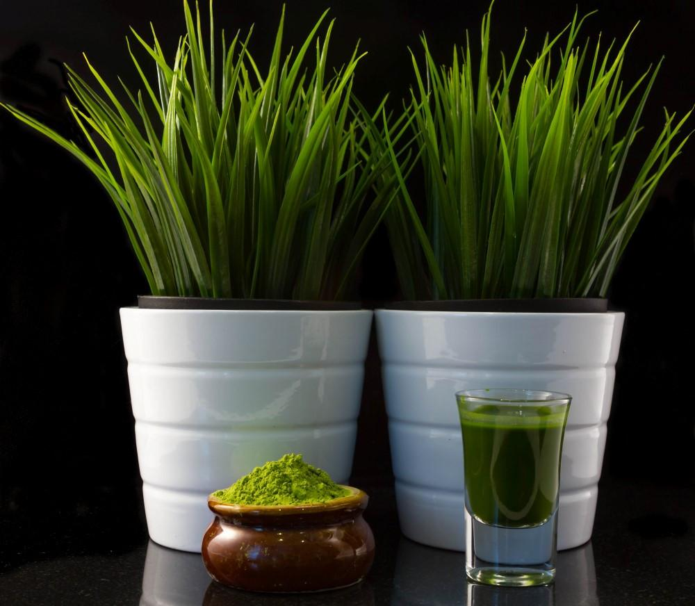 Organic Wheat Grass Juice Powder 1