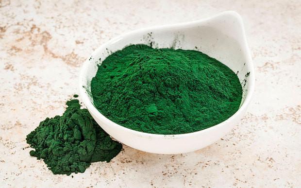 Organic Spirulina Powder 4 oz
