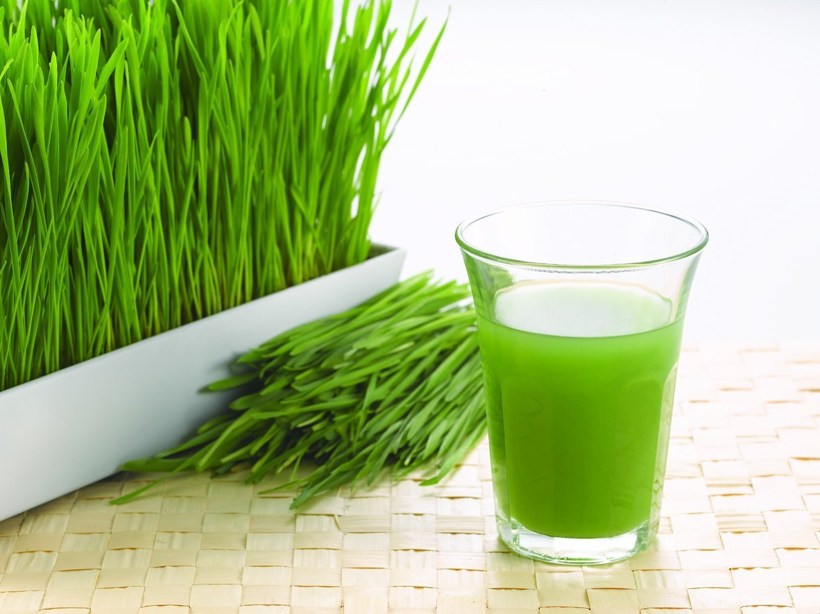 Organic Wheat Grass Powder 1